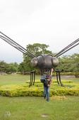 花蓮行2014:蜻蜓超人
