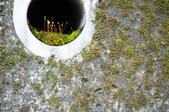 20140713南投中坑瀑布、九份二山:本要拍孔裡面的小天地太高了~~