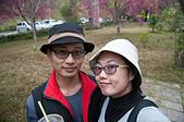 20150215-16蕙蓀林場>彰化北斗:DSC_6120.jpg