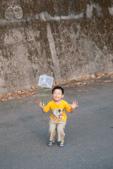 20140413惠蓀林場外看螢火蟲:跳跳跳