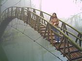 97年溪頭杉林溪 , 97年5月苗栗鹿場神仙谷,卓蘭花自在 :PICT0031.JPG