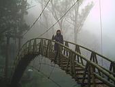 97年溪頭杉林溪 , 97年5月苗栗鹿場神仙谷,卓蘭花自在 :PICT0036.JPG