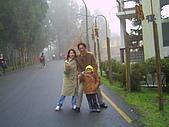 97年溪頭杉林溪 , 97年5月苗栗鹿場神仙谷,卓蘭花自在 :PICT0024.JPG