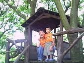 桃園休閒戶外照 , 大台北:湯姆歷險記樹屋