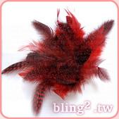 晶鑽飾品—羽毛髮飾:1054549424.jpg