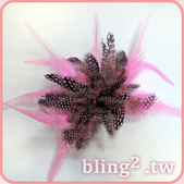 晶鑽飾品—羽毛髮飾:1054549425.jpg