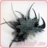 晶鑽飾品—羽毛髮飾:1054549426.jpg