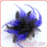 晶鑽飾品—羽毛髮飾:1054549428.jpg