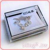 晶鑽飾品—925純銀耳環:925純銀耳環