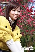 九族櫻花祭:IMG_3333.JPG