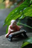 阿爸的後花園:IMG_0043.JPG