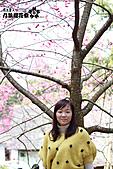 九族櫻花祭:IMG_3352.JPG