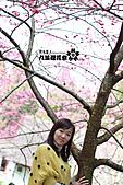 九族櫻花祭:IMG_3354.JPG