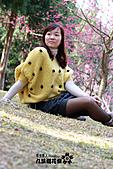九族櫻花祭:IMG_3365.JPG