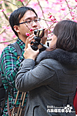 九族櫻花祭:IMG_3396.JPG