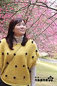 九族櫻花祭:IMG_3401.JPG