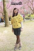 九族櫻花祭:IMG_3405.JPG