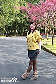 九族櫻花祭:IMG_3419.JPG