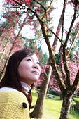 九族櫻花祭:IMG_3426.JPG