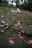 祕密花園:IMG_5983.JPG