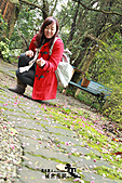祕密花園:IMG_5912.JPG