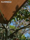 南投第二天-老英格蘭(對面的)下午茶..+紫南宮與七星級廁所巡禮:合歡山 302.JPG