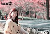 九族櫻花祭:IMG_3472.JPG