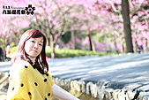 九族櫻花祭:IMG_3476.JPG