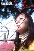 九族櫻花祭:IMG_3555.JPG