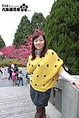 九族櫻花祭:IMG_3186.JPG