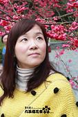 九族櫻花祭:IMG_3198.JPG
