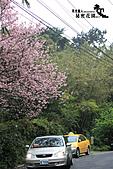 祕密花園:IMG_6064.JPG