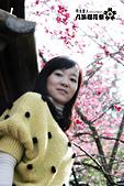 九族櫻花祭:IMG_3261.JPG