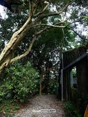 陽明山祕密花園:SAM_7573.JPG
