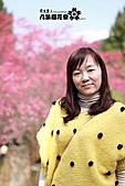 九族櫻花祭:IMG_3308.JPG