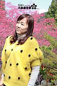 九族櫻花祭:IMG_3313.JPG