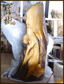 ╭ 寶樹 ╮ 天然台灣原木木雕藝術品:P1010819.JPG