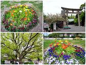 日本賞櫻之旅2010:日本賞櫻之旅12