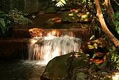 天母磺溪水石之美:IMG_3790