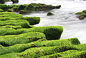 老梅綠石槽:IMG_1586.JPG