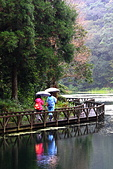福山植物園的溼意:IMG_9814.JPG