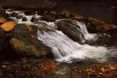 金瓜石黃金瀑布:IMG_8882