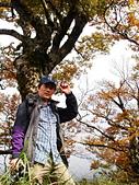 臺灣山毛櫸步道(二):DSC06315.JPG