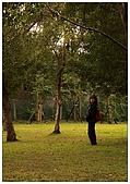 紅櫻花綠繡眼:CRW_2180.jpg