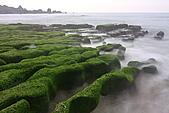 老梅綠石槽:IMG_1689.JPG