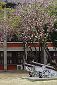 成大校區:IMG_0268.JPG