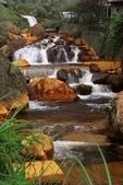 金瓜石黃金瀑布:IMG_8878