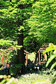 木柵動物園外拍:IMG_3297.JPG