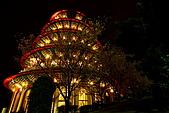 淡水天元宮夜拍:IMG_0750.JPG