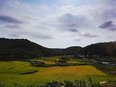 桃園風尾坑梯田:DSC09156.JPG
